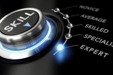 Automotive importer business restructuring